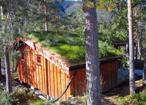 Hytte med gress på taket