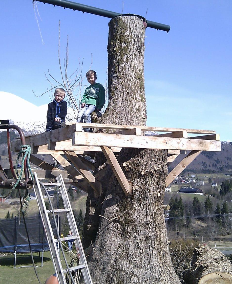 Bygge hytte i tre