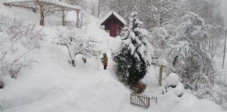 Vinter_1000