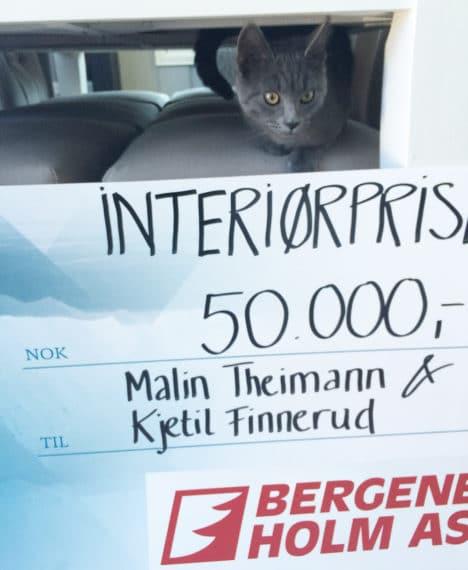 Katt_1000