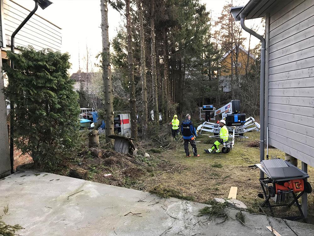 Bilde av felling av trær. Finalist nummer 7 uteromsprisen 2021.